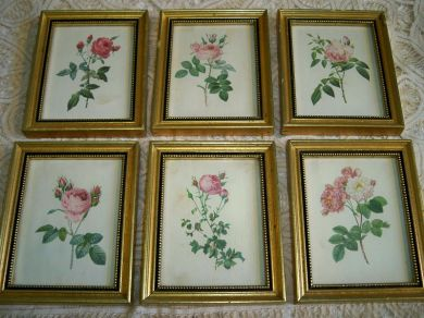 Vintage Framed Roses Prints Set of 6